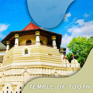 temple of tooth